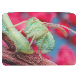 Minute Bug On Branch. Kruger National Park iPad Air Cover