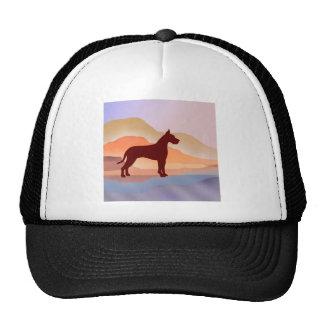 Miountain Mirage Great Dane Hats