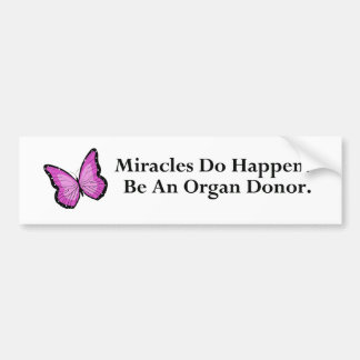 Miracle Butterfly Car Bumper Sticker