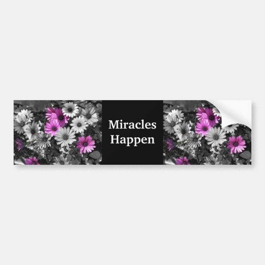 Miracles Happen Purple Daisies Bumper Sticker