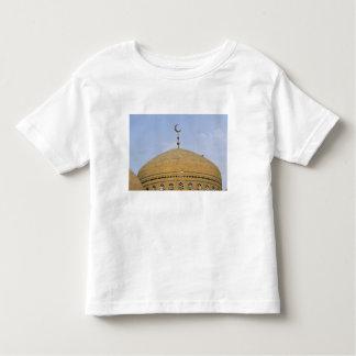 Mirjaniyya Madrasa, Baghdad, Iraq Toddler T-Shirt