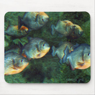 Mirrored Piranha Mouse Pads