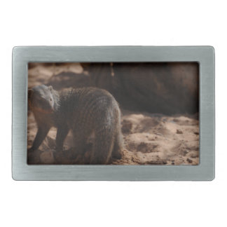 Miscellaneous - Banded Mongoose Pattern Belt Buckle