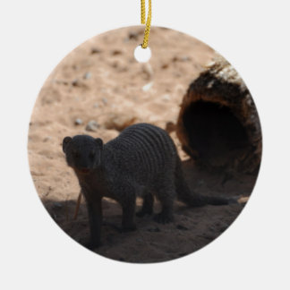 Miscellaneous - Banded Mongoose - Shadows & Light Round Ceramic Decoration