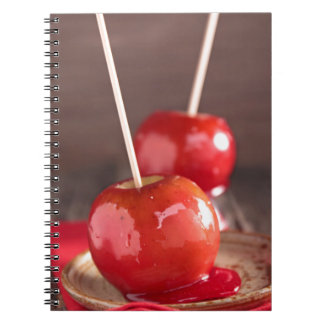 Miscellaneous - Candy Apple Patterns Furnace Notebook