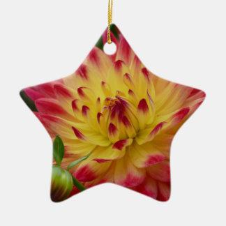 Miscellaneous - Dahlias Patterns Forty-Nine Ceramic Star Decoration