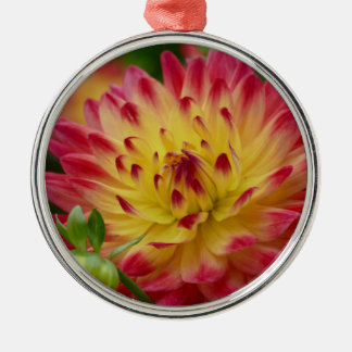 Miscellaneous - Dahlias Patterns Forty-Nine Silver-Colored Round Decoration