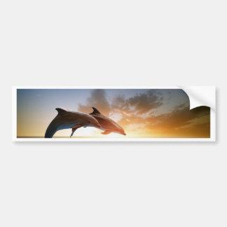 Miscellaneous - Dolphins Jump Fifteen Bumper Sticker