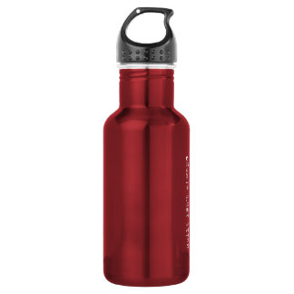 misconduct. 18oz Stainless Steel Water Bottle