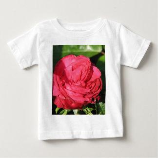 Miss All-American Beauty Hybrid Tea Rose 097 T Shirts