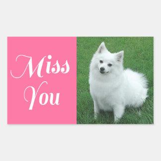 Miss You American Eskimo Puppy Dog Sticker