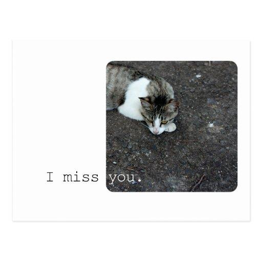 Miss You Cat Postcard (PC13002)