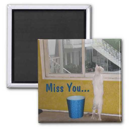 Miss You... Magnet!