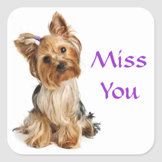 Miss You Yorkshire Terrier Puppy  Dog Stickers