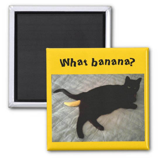 Missing banana cat toy magnet