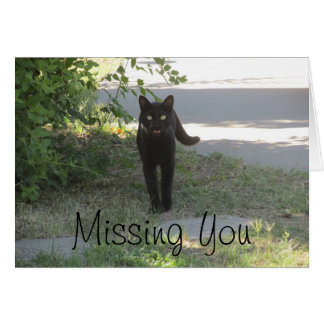 Missing You Black Cat in a Garden Note Card