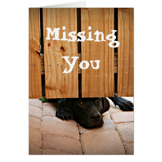Missing You (Black Lab) Card