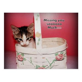 Missing you kitten Postcard
