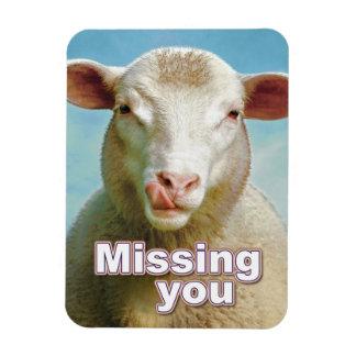 Missing you magnet