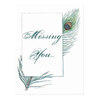 Missing You Peacock Feather Inspirational Postcard