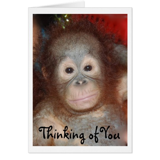 Missing You Sad Face Baby Animal Card