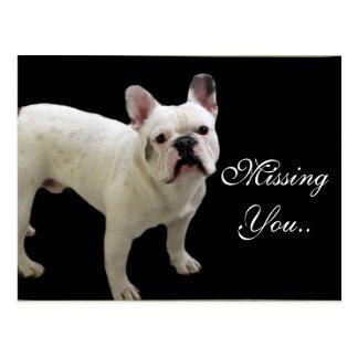 MIssing You White French Bulldog postcard