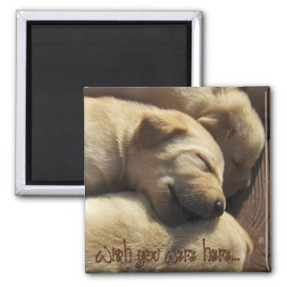 Missing You - Wish You Were Here - Labrador Fridge Magnets