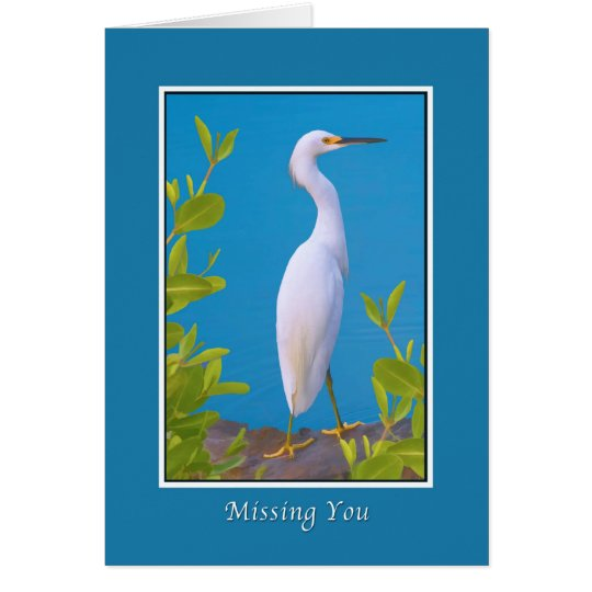 Missing Youm Snowy Egret at the Pond Card