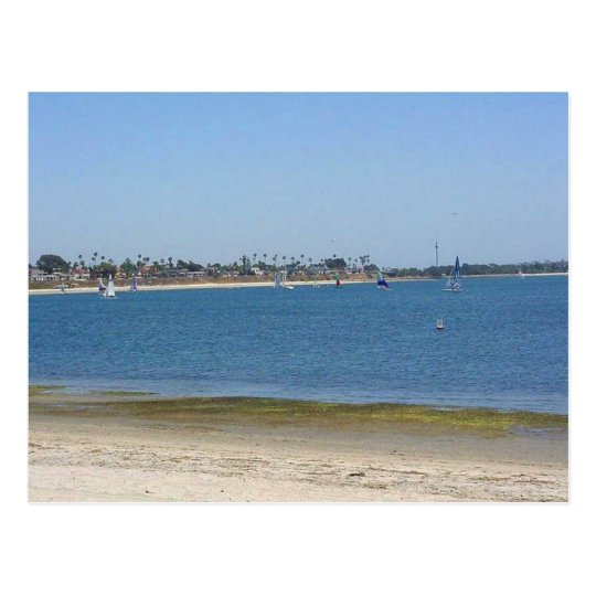 Mission Bay Sailboats Water Postcard