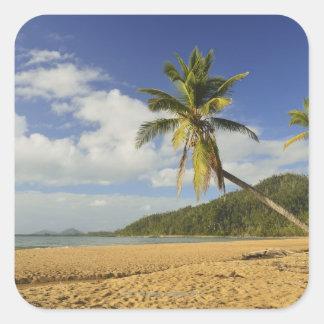 Mission Beach Square Sticker