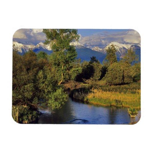 Mission Creek in the National Bison Range in Vinyl Magnet