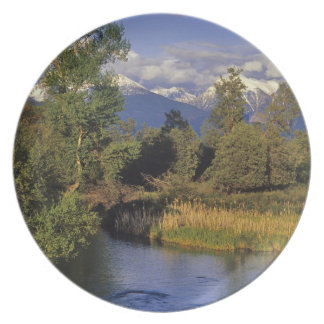 Mission Creek runs through the National Bison Party Plate