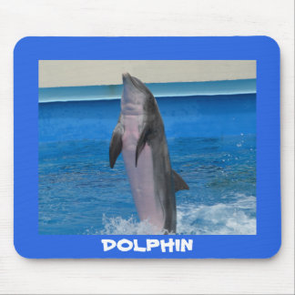 Mississippi Dolphin Mouse Mat