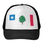Mississippi Flag T-Shirts (1861) Trucker Hat
