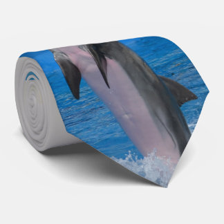 Mississippi, Florida Dolphin Tie
