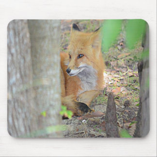 Mississippi Red Fox Mouse Mat