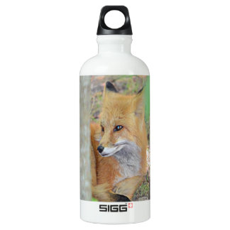 Mississippi Red Fox SIGG Traveller 0.6L Water Bottle