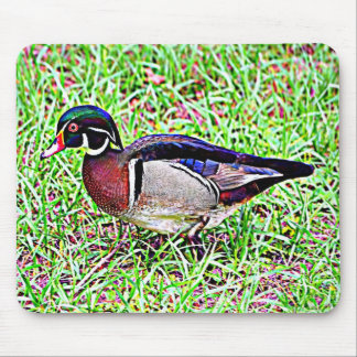 Mississippi Wood Duck Mouse Pad