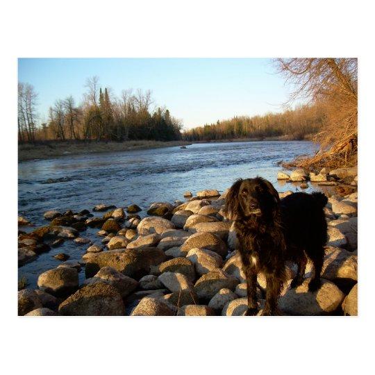 Mississppi river - Good Morning Postcard