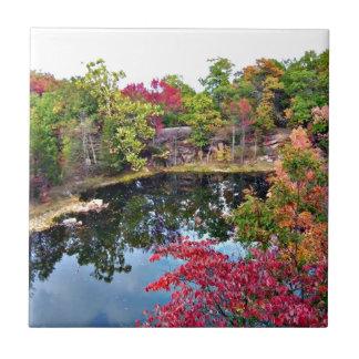 Missouri Fall Photograph Tile