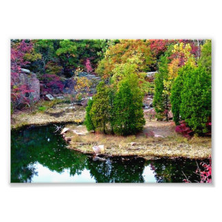 Missouri fall Trees Photo Print