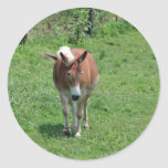 MIssouri Mule Classic Round Sticker