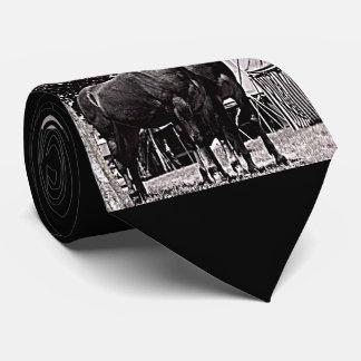 Missouri Mule Tie