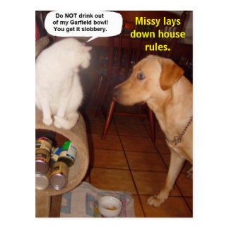 Missy lays down house rules post cards