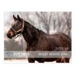 Missy White Oak postcard