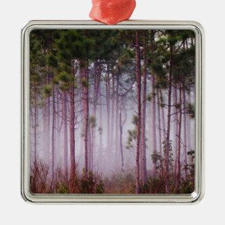 Mist among pine trees at sunrise, Everglades Christmas Ornament