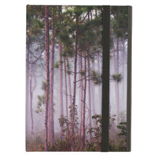 Mist among pine trees at sunrise, Everglades Cover For iPad Air