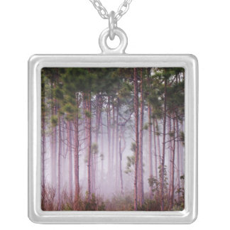 Mist among pine trees at sunrise, Everglades Silver Plated Necklace