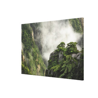 Mist among the peaks and valleys of Grand Canyon Stretched Canvas Prints