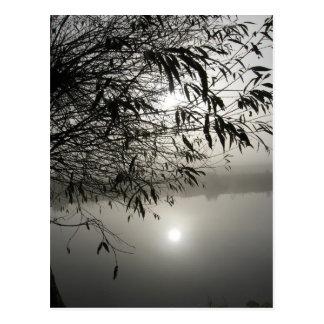 Mist and Shadow Card